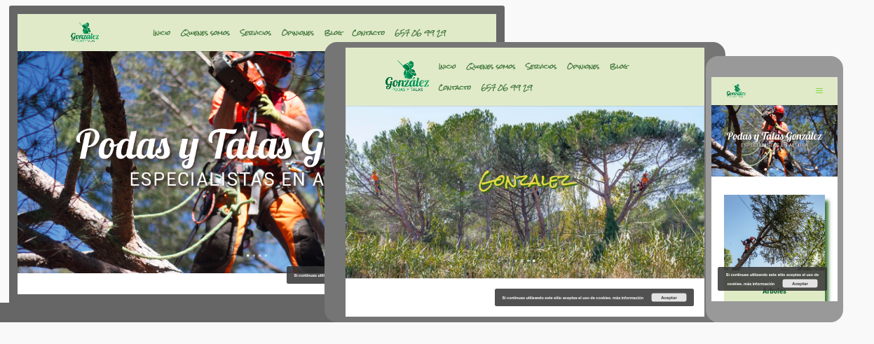 Diseño y posicionamiento web para podas y talas en madrid