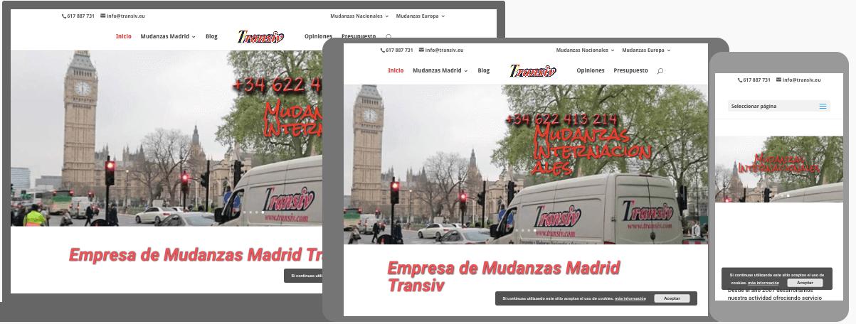 diseño web para mudanzas